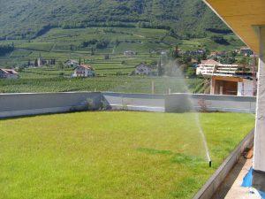 Dachbegrünung Intensivbegrünzng Rasen